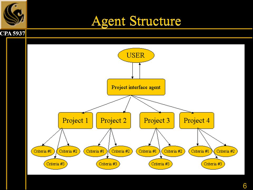 6 CPA 5937 Agent Structure