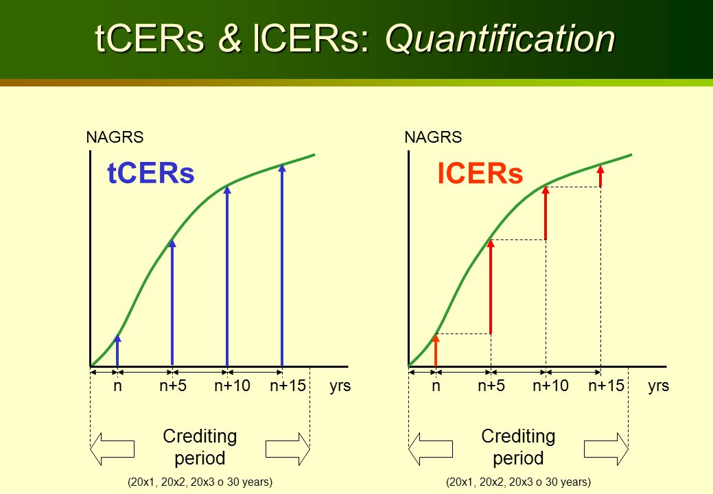 tCERs & lCERs: Quantification tCERs NAGRS n n+5 n+10 n+15 yrs Crediting period (20x1, 20x2, 20x3 o 30 years) Crediting period (20x1, 20x2, 20x3 o 30 y