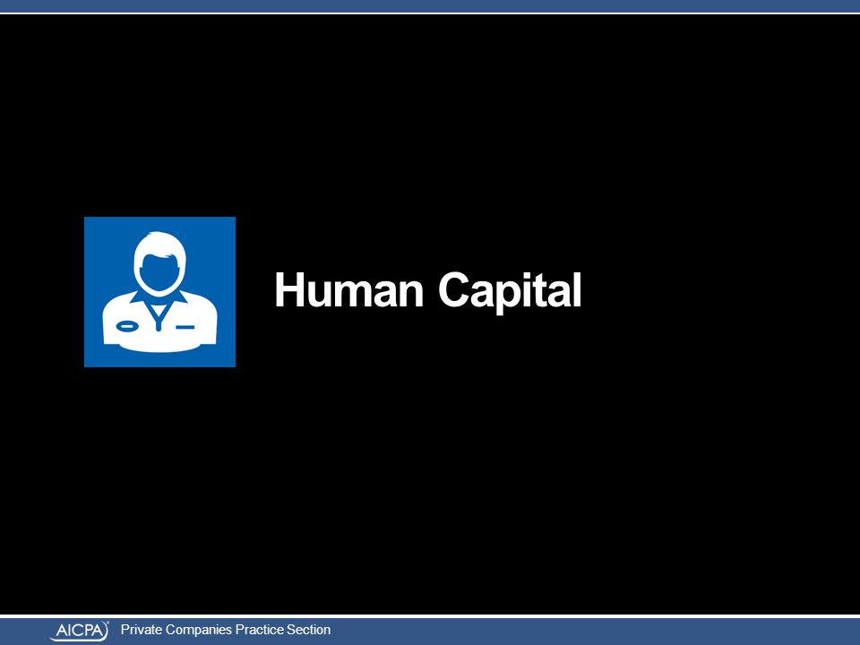 Private Companies Practice Section Human Capital
