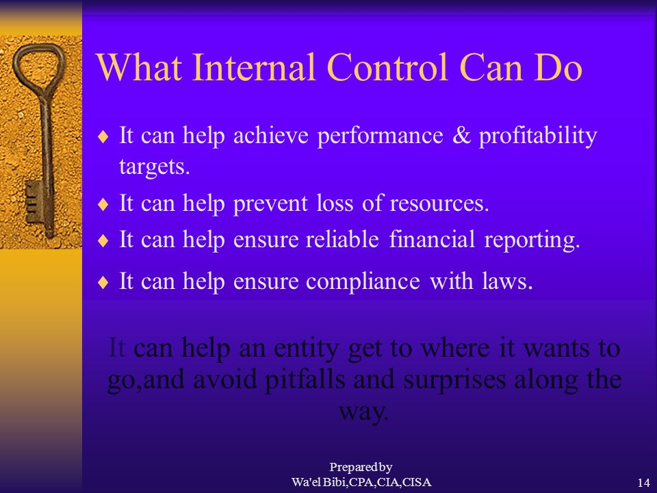 Prepared by Wa el Bibi,CPA,CIA,CISA14 What Internal Control Can Do  It can help achieve performance & profitability targets.