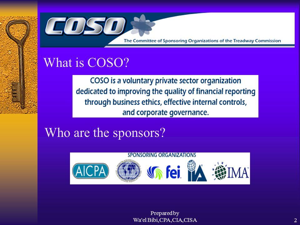 Prepared by Wa el Bibi,CPA,CIA,CISA13 Responsibilities Who is responsible for internal control .