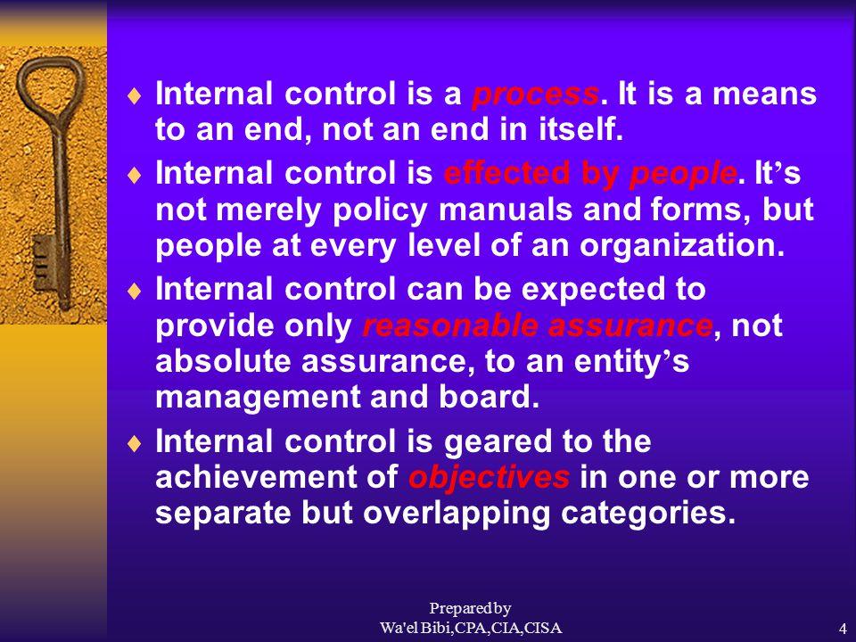 Prepared by Wa el Bibi,CPA,CIA,CISA15 What Internal Control Cannot Do  It cannot ensure success.