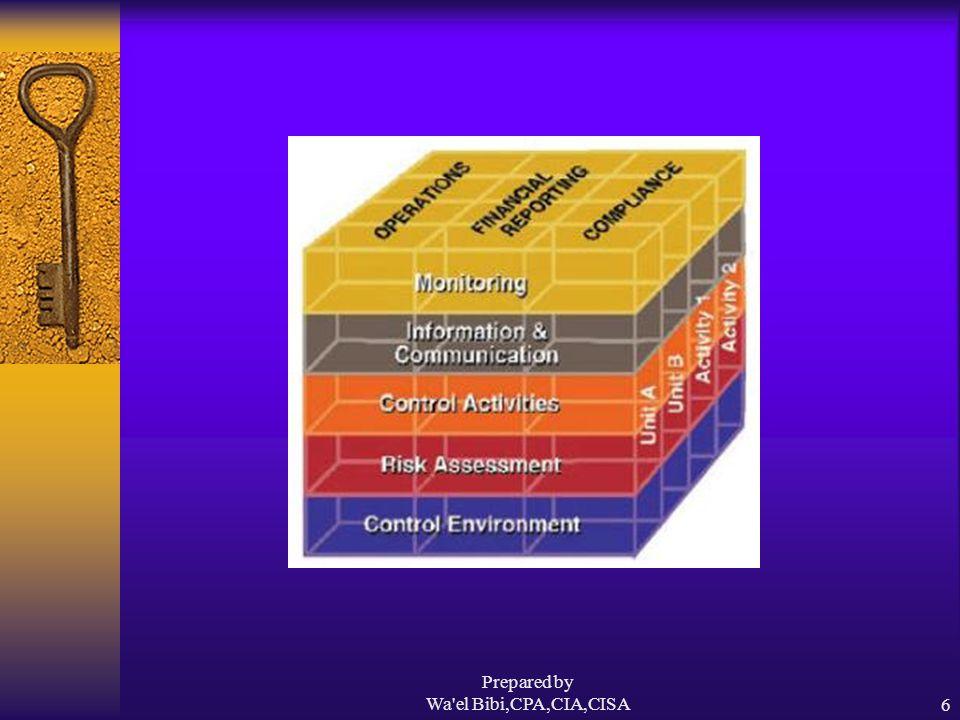 17 Principles Prepared by Wa el Bibi,CPA,CIA,CISA7 Source: Deloitte