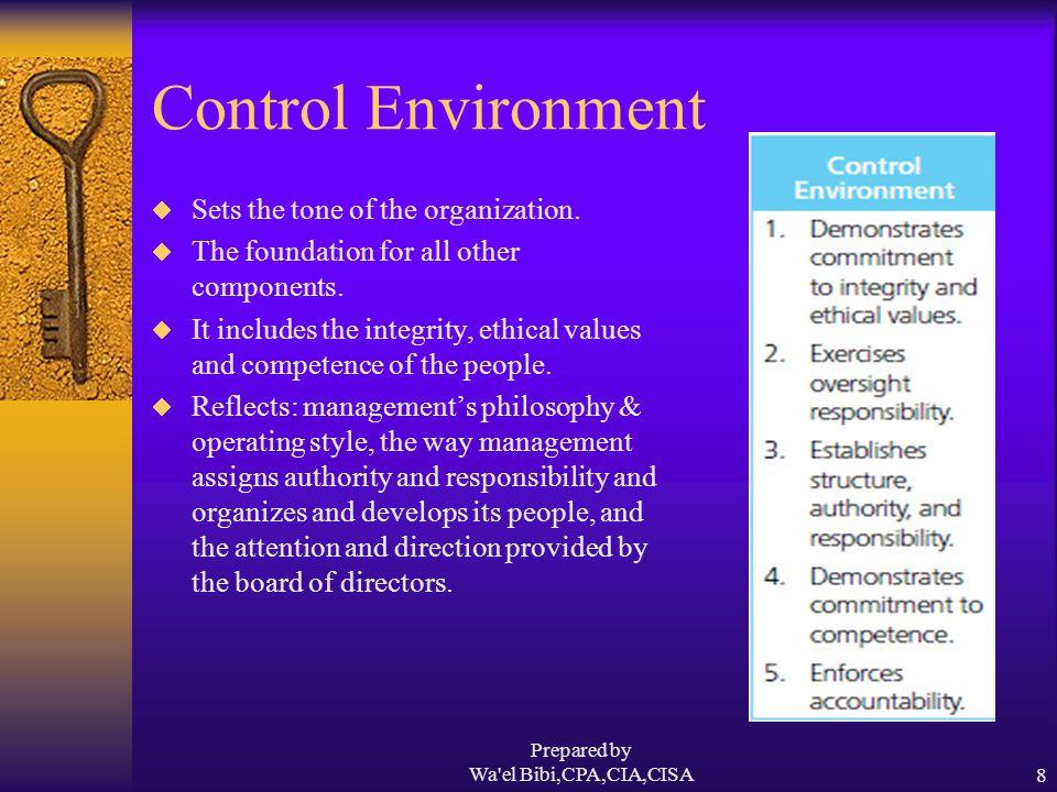 Prepared by Wa el Bibi,CPA,CIA,CISA9 Risk Assessment  Every entity faces internal &external risks.