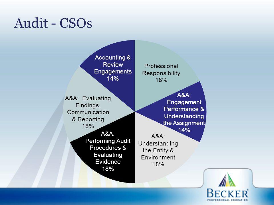 Audit - CSOs