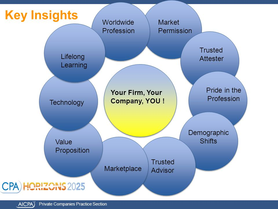 Private Companies Practice Section Key Insights Your Firm, Your Company, YOU .