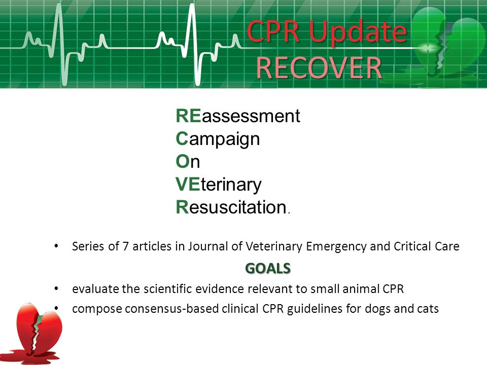 CPR Team Leadership Presence of physician at human CPR does not necessarily improve outcome Some studies show improved outcome, some no difference and a few worse outcome when a doctor is present for CPR The flaw might be in assuming that physicians are actually more experienced (skilled) than nurses or paramedics at CPR Survival rates not affected by experience of the first responder No veterinary studies comparing outcomes of vets vs.