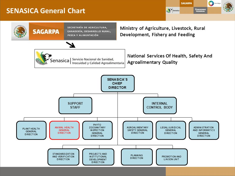 2009 - 2010: SENASICA's proyect for construction of 16 facilities CPA Laboratory Network – Molecular Biology Labs 13 laboratories under control of CPA Biosafety level 2 (with improvements) Diagnostic test based in molecular biology and serology: – Standard PCR – Real time PCR – Sequencing (only 3 labs) – ELISA test (comercial kits) Diagnosis of CSF, AI, ND and Crustaceans diseases