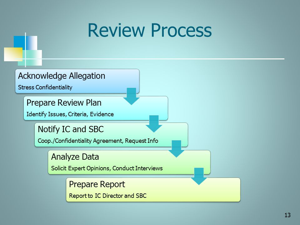Review Process Acknowledge Allegation Stress Confidentiality Prepare Review Plan Identify Issues, Criteria, Evidence Notify IC and SBC Coop./Confident