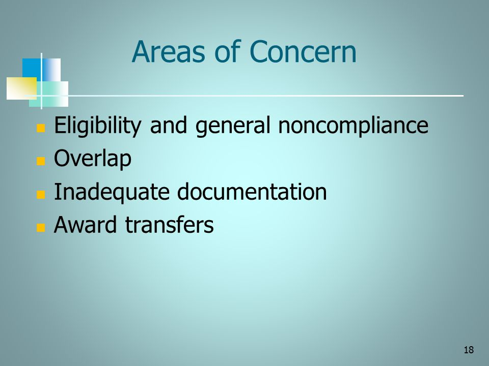 Areas of Concern Eligibility and general noncompliance Overlap Inadequate documentation Award transfers 18