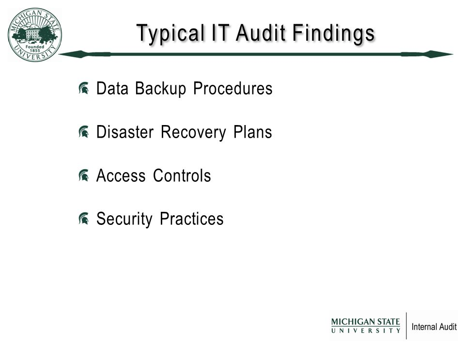 Typical IT Audit Findings Data Backup Procedures Disaster Recovery Plans Access Controls Security Practices