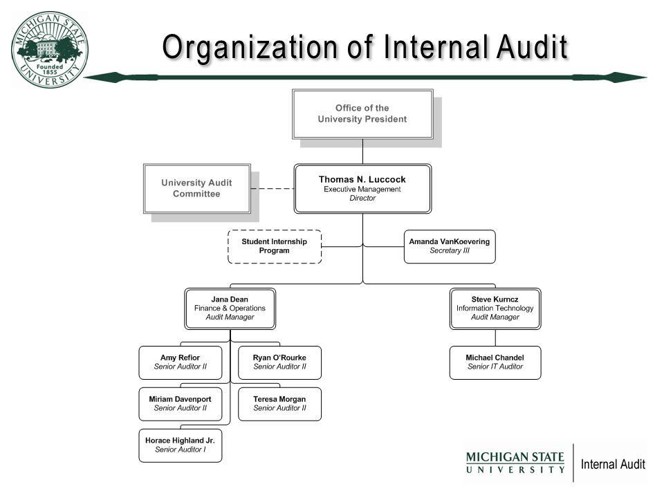 Organization of Internal Audit