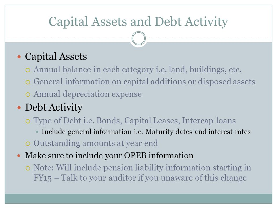 Capital Assets and Debt Activity Capital Assets  Annual balance in each category i.e.