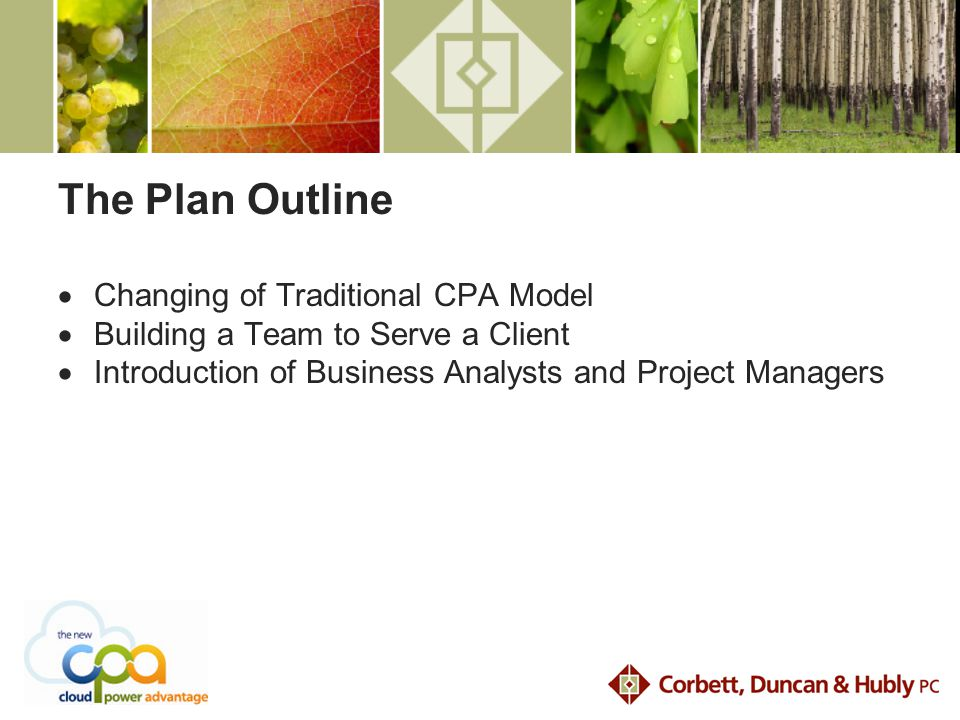 The Plan Outline  Changing of Traditional CPA Model  Building a Team to Serve a Client  Introduction of Business Analysts and Project Managers