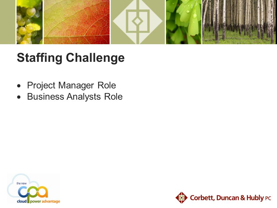 Staffing Challenge  Project Manager Role  Business Analysts Role