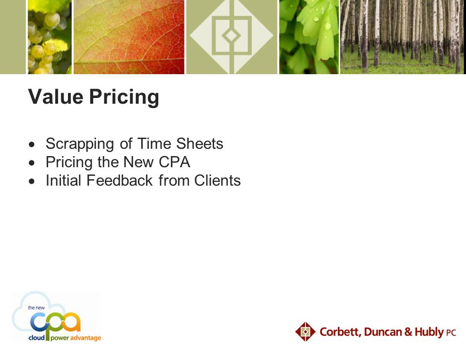 Value Pricing  Scrapping of Time Sheets  Pricing the New CPA  Initial Feedback from Clients