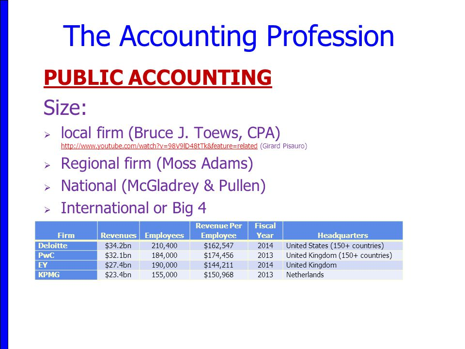 The Accounting Profession PUBLIC ACCOUNTING Size:  local firm (Bruce J.