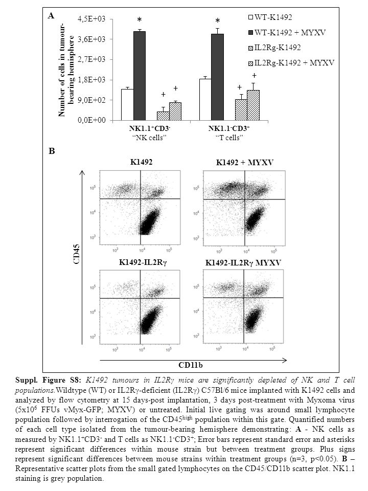 A * * B Suppl.Figure S9: Non-tumour bearing IL2Rγ-deficient animals are impaired in clearing MYXV.