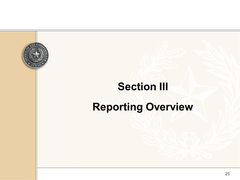 25 Section III Reporting Overview
