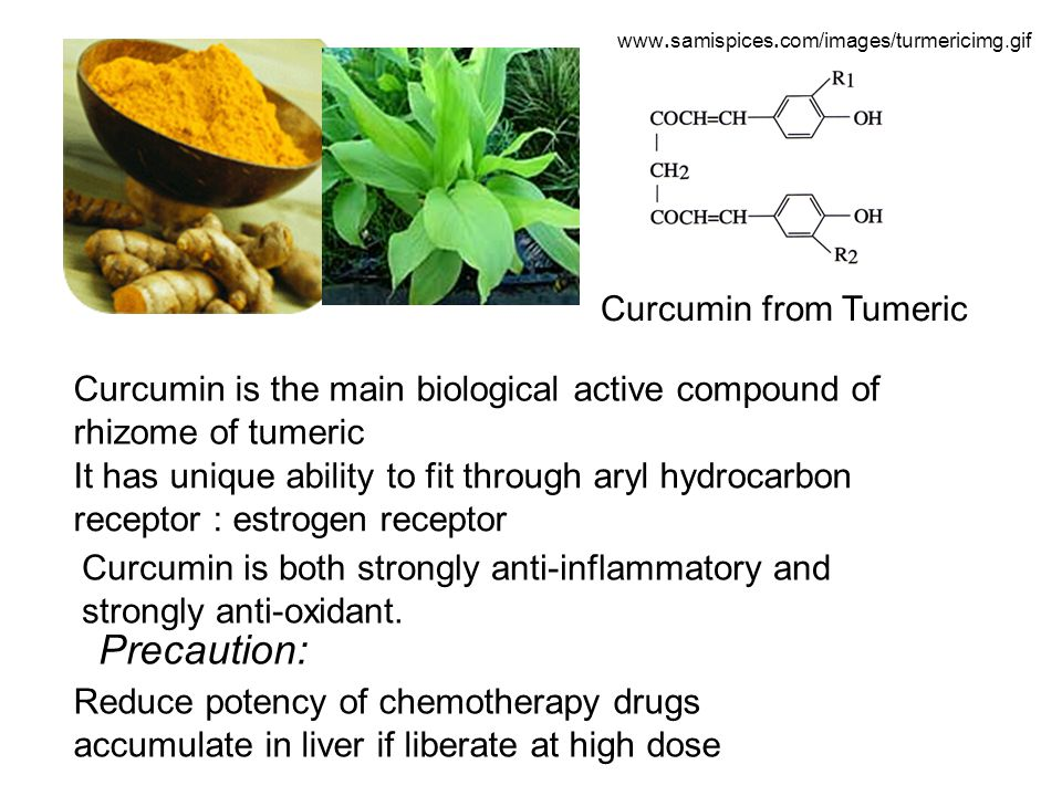 www.samispices.com/images/turmericimg.gif Curcumin from Tumeric Curcumin is the main biological active compound of rhizome of tumeric It has unique ab