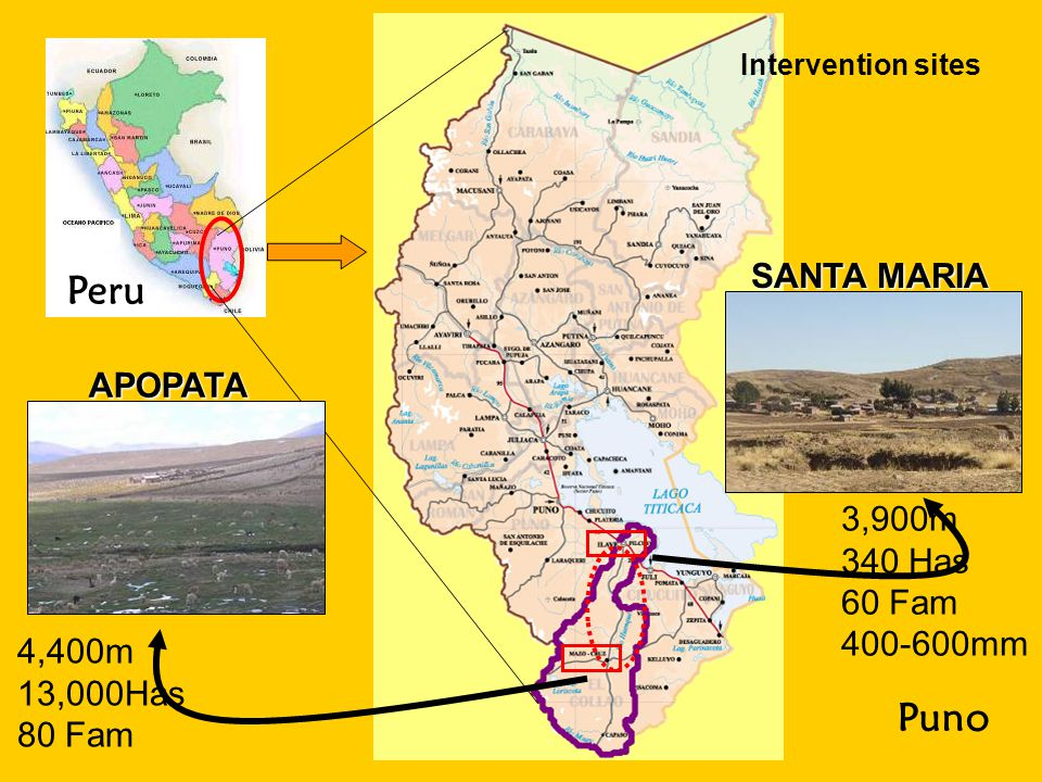 Peru Puno Intervention sites APOPATA SANTA MARIA 4,400m 13,000Has 80 Fam 3,900m 340 Has 60 Fam 400-600mm