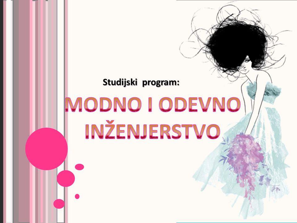 Studijski program: