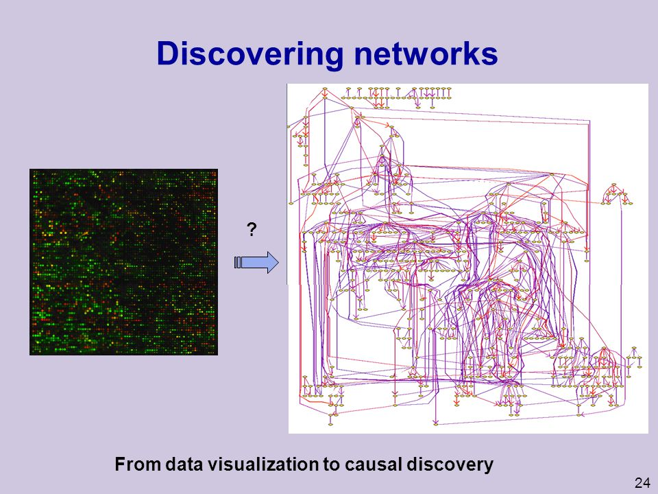 25 Networks in biology u Most processes in the cell are controlled by networks of interacting molecules: l Metabolic Network l Signal Transduction Networks l Regulatory Networks u Networks can be modeled at multiple levels of detail/ realism l Molecular level l Concentration level l Qualitative level Decreasing detail