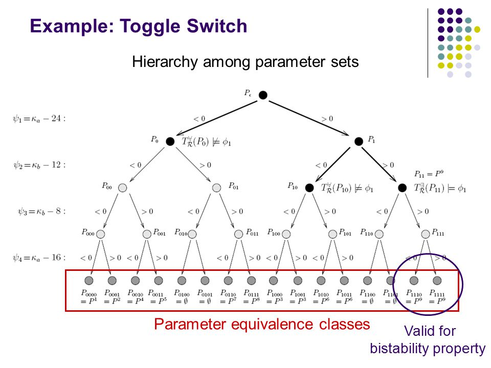 Example: Toggle Switch Hierarchy among parameter sets Parameter equivalence classes Valid for bistability property