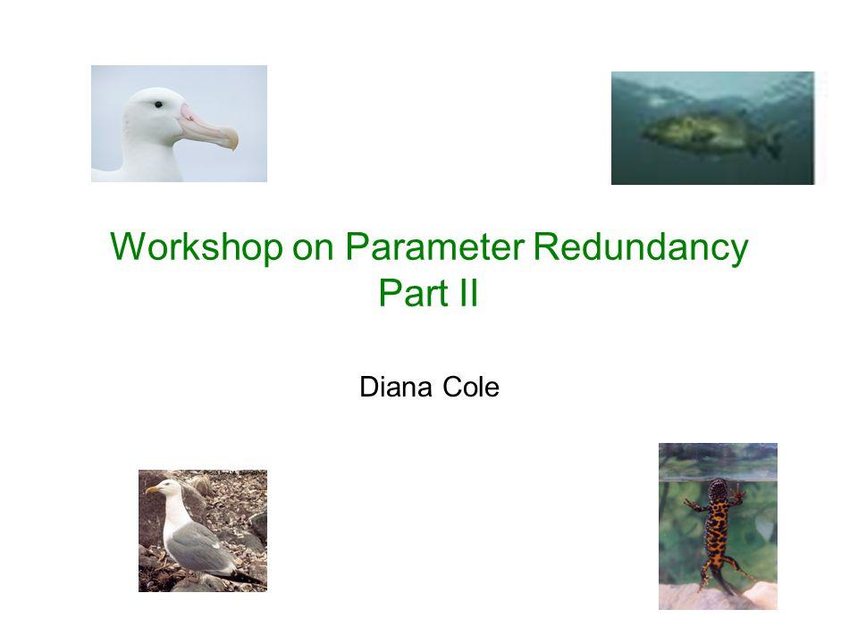 Workshop on Parameter Redundancy Part II Diana Cole