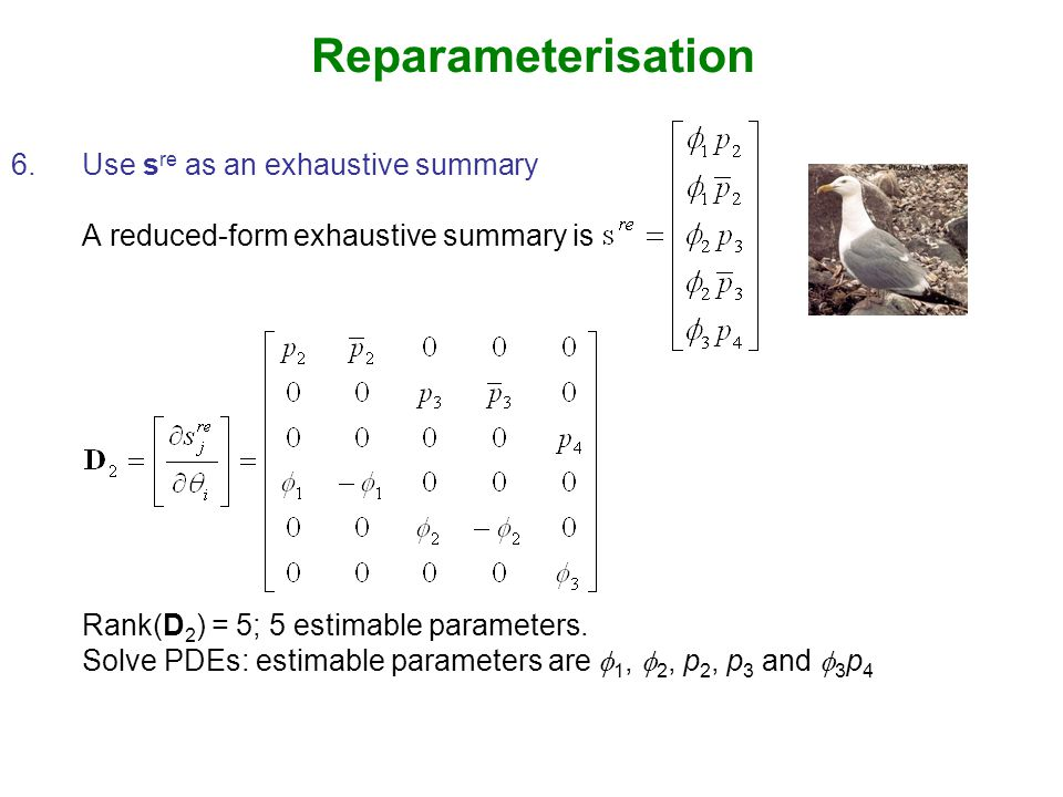 Reparameterisation 6.Use s re as an exhaustive summary A reduced-form exhaustive summary is Rank(D 2 ) = 5; 5 estimable parameters.