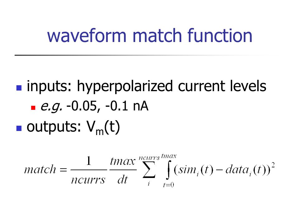 waveform match function inputs: hyperpolarized current levels e.g. -0.05, -0.1 nA outputs: V m (t)