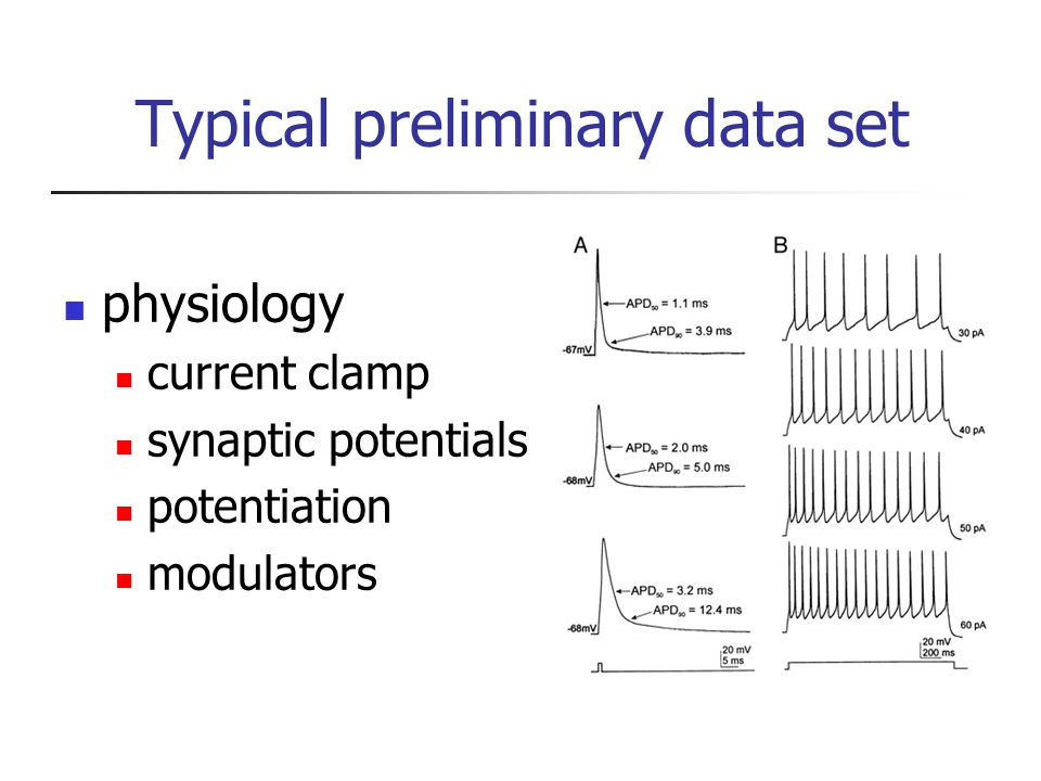 Typical preliminary data set physiology current clamp synaptic potentials potentiation modulators