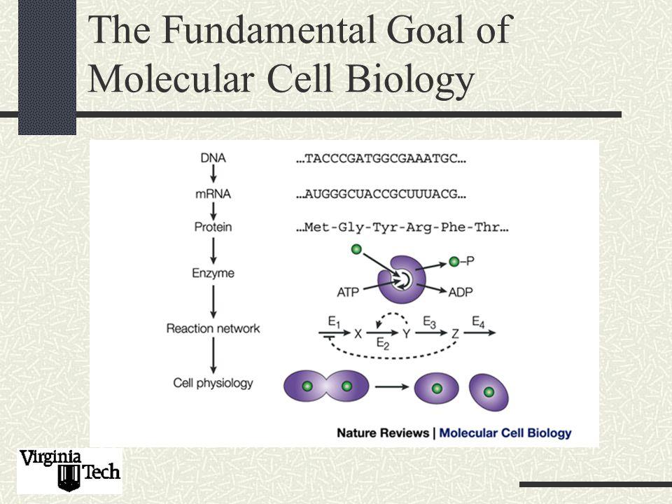 The Fundamental Goal of Molecular Cell Biology
