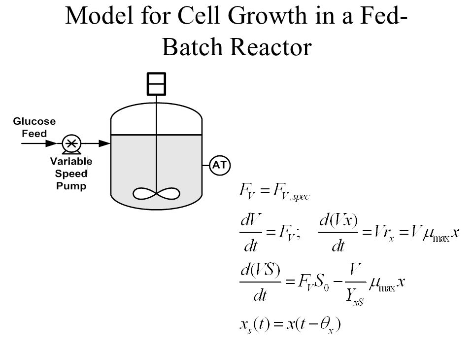 Model for Cell Growth in a Fed- Batch Reactor