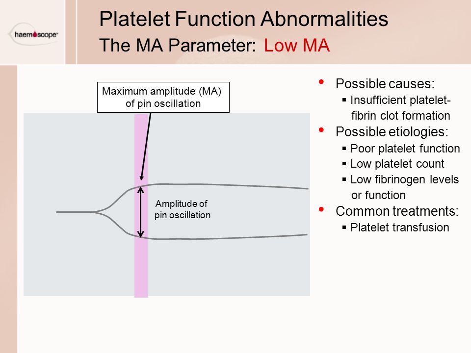 Platelet Function Abnormalities The MA Parameter: Low MA Possible causes:  Insufficient platelet- fibrin clot formation Possible etiologies:  Poor platelet function  Low platelet count  Low fibrinogen levels or function Common treatments:  Platelet transfusion Maximum amplitude (MA) of pin oscillation Amplitude of pin oscillation