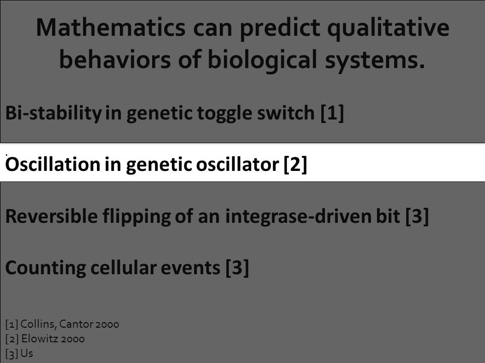 Mathematics can predict qualitative behaviors of biological systems..