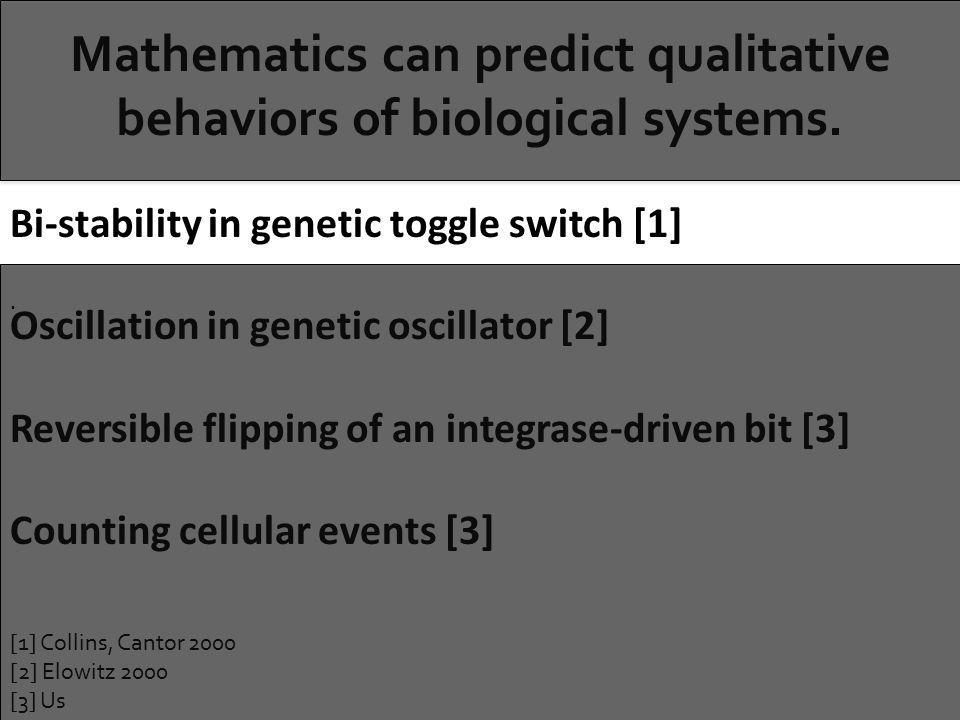 Mathematics can predict qualitative behaviors of biological systems..