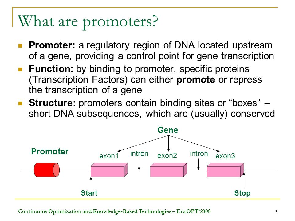Continuous Optimization and Knowledge-Based Technologies – EurOPT'2008 3 What are promoters.