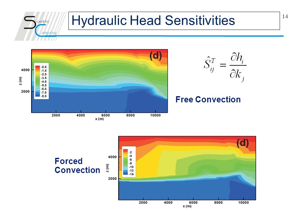 14 Free Convection Forced Convection Hydraulic Head Sensitivities