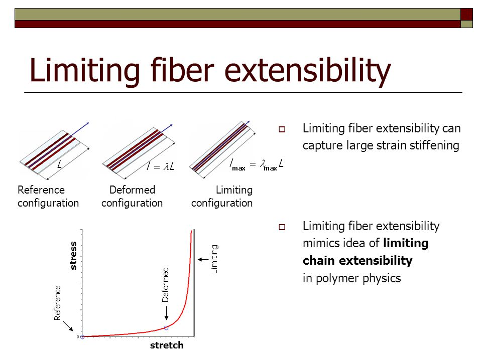 Limiting fiber extensibility Reference configuration Deformed configuration Limiting configuration stress stretch  Limiting fiber extensibility mimics idea of limiting chain extensibility in polymer physics  Limiting fiber extensibility can capture large strain stiffening Reference Deformed Limiting