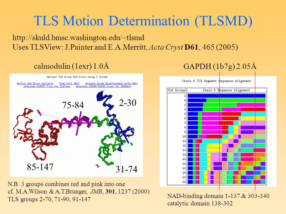 TLS Motion Determination (TLSMD) http://skuld.bmsc.washington.edu/~tlsmd Uses TLSView: J.Painter and E.A.Merritt, Acta Cryst D61, 465 (2005) calmodulin (1exr) 1.0Å N.B.