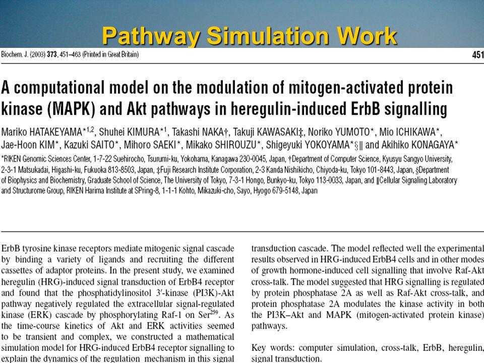 Pathway Simulation Work
