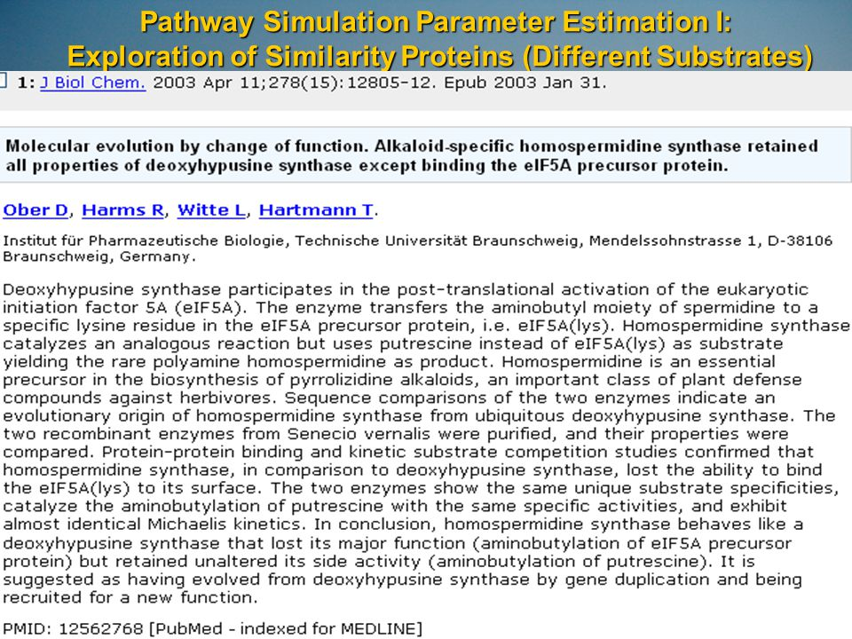Pathway Simulation Parameter Estimation I: Exploration of Similarity Proteins (Different Substrates)