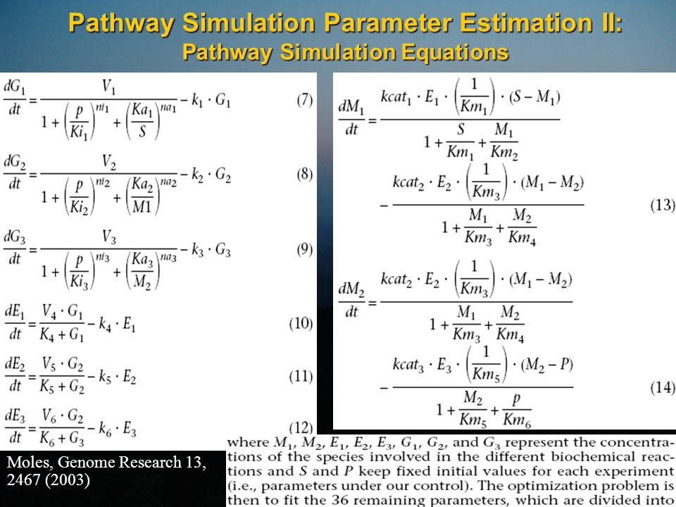 Pathway Simulation Parameter Estimation II: Pathway Simulation Equations Moles, Genome Research 13, 2467 (2003)