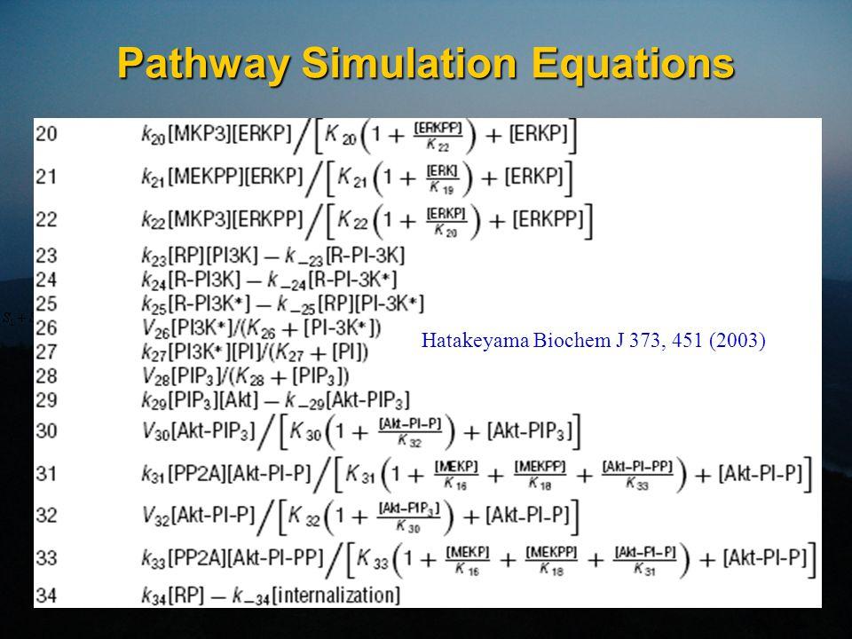 Pathway Simulation Parameters Hatakeyama Biochem J 373, 451 (2003)