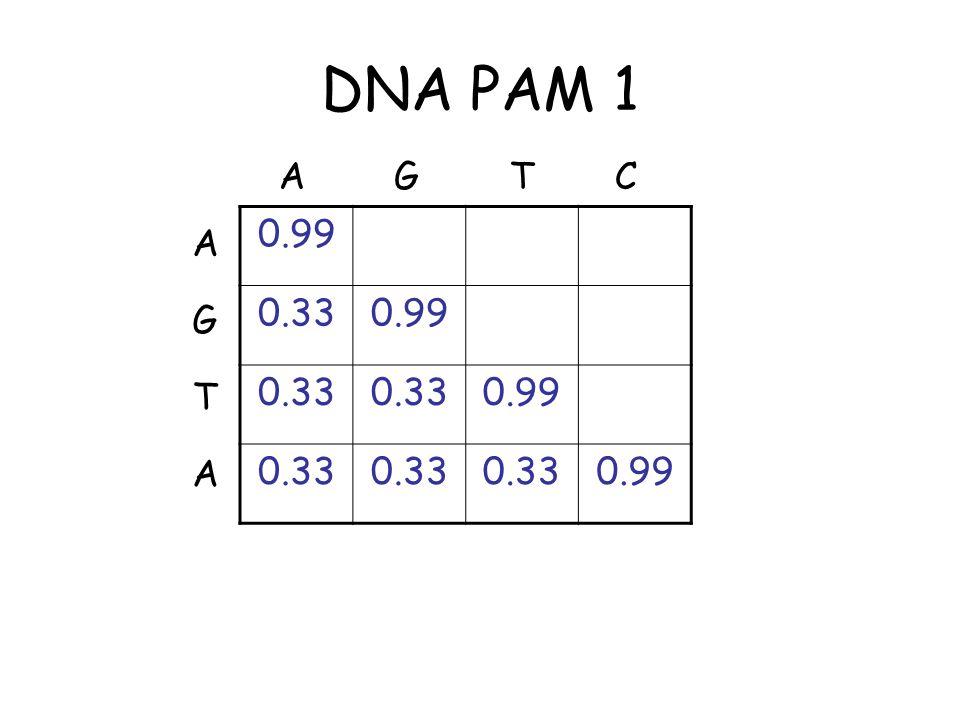 DNA PAM 1 0.99 0.330.99 0.33 0.99 0.33 0.99 A CTG T A G A