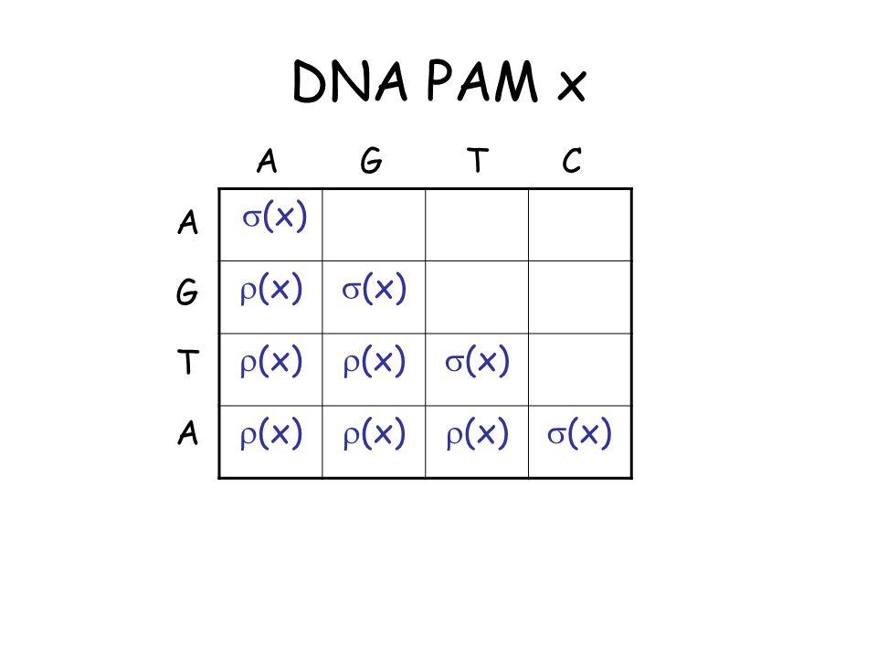 DNA PAM x As x  ,  (x) and  (x)  1/4 Assume p i = ¼ for i ={A,C,T,G} Leads to simple match/mismatch scoring scheme
