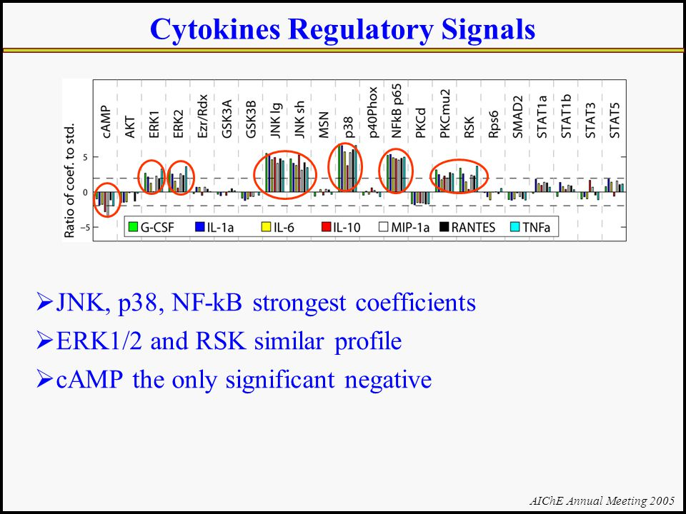 AIChE Annual Meeting 2005 Cytokines Regulatory Signals  JNK, p38, NF-kB strongest coefficients  ERK1/2 and RSK similar profile  cAMP the only significant negative