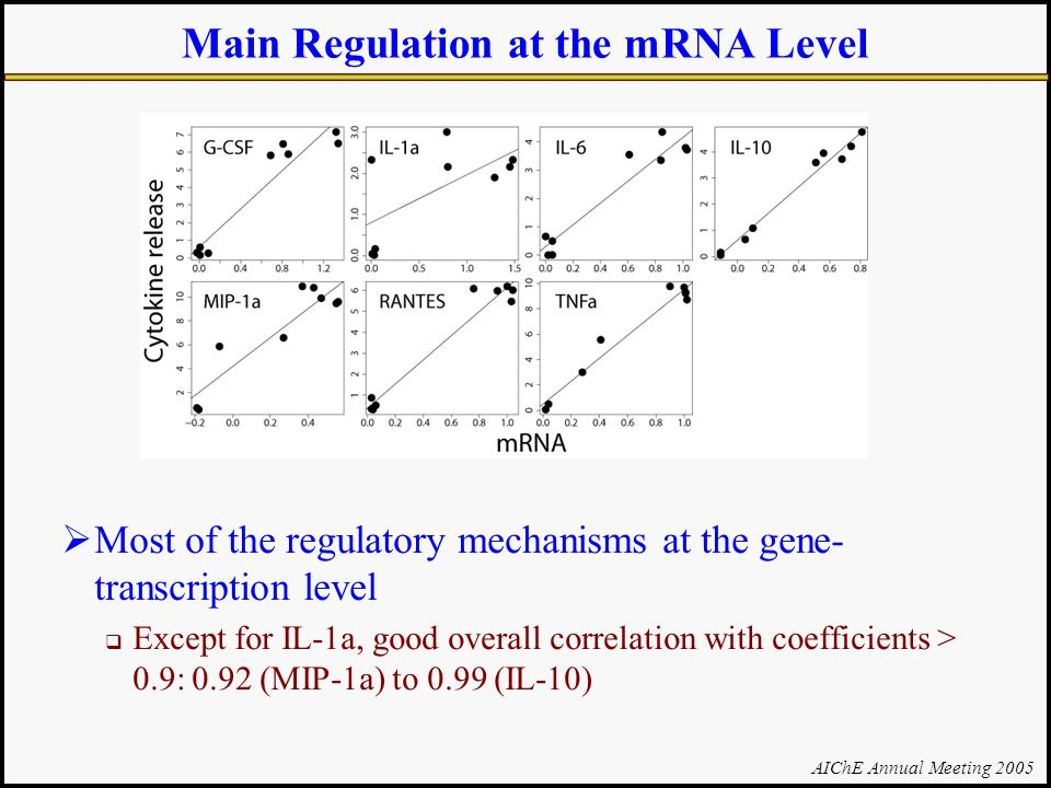 AIChE Annual Meeting 2005 Main Regulation at the mRNA Level  Most of the regulatory mechanisms at the gene- transcription level  Except for IL-1a, good overall correlation with coefficients > 0.9: 0.92 (MIP-1a) to 0.99 (IL-10)