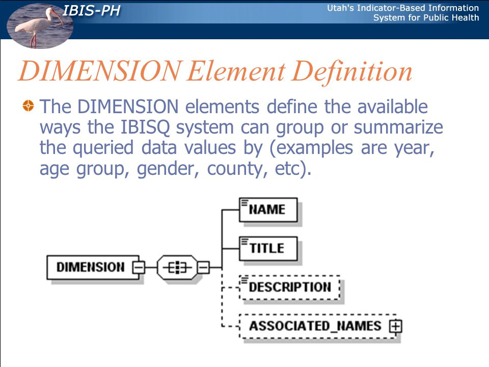 DIMENSION Element Definition The DIMENSION elements define the available ways the IBISQ system can group or summarize the queried data values by (examples are year, age group, gender, county, etc).